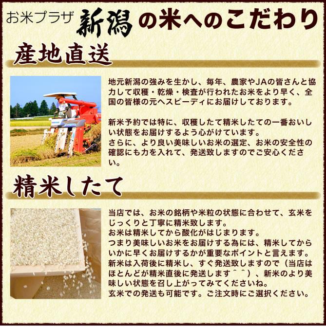 お米プラザ新潟の米へのこだわり