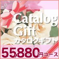 50600円コース