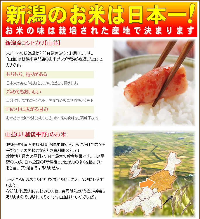 新潟のお米は日本一!