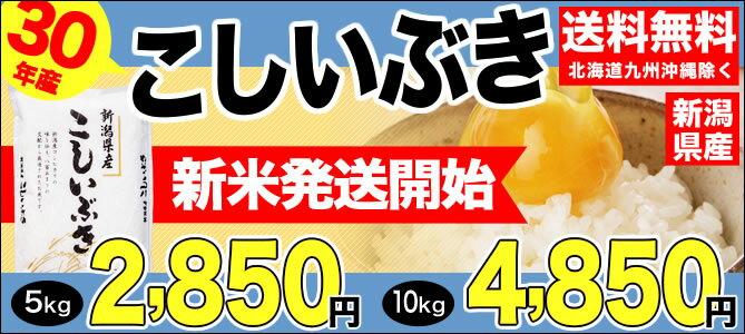 30年産新米新潟産こしいぶき入荷!