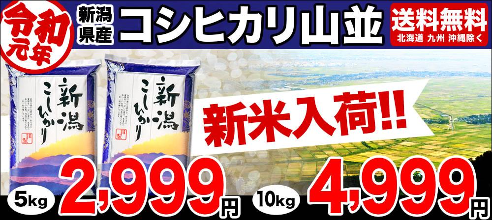 30年産新潟産コシヒカリ山並入荷!
